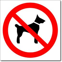 """Знак """"Вход с собаками запрещен"""""""